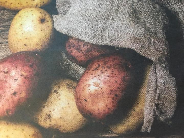 Har du potatisskräck?