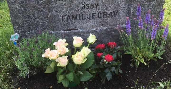 Mammas sista födelsedag